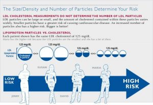 Size/Density and number of particles determine your health risk